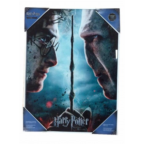 Póster de vidrio Harry Potter & Voldemort 30x40cm - Harry Potter