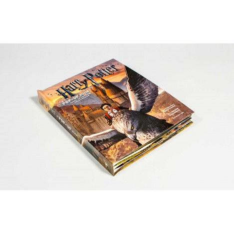 Harry Potter A Pop-Up book (Inglés)