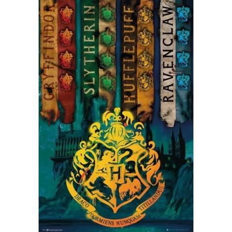 Poster House Flags 61 x 91 cm - Harry Potter
