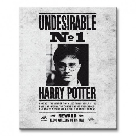 Lienzo UNDESIRABLE N1º - Harry Potter