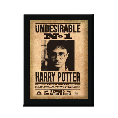 Cartel Indeseable Nº1 Harry Potter