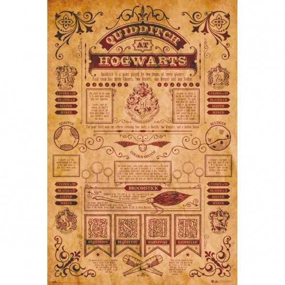 Poster Quiddtch Hogwarts - Harry Potter